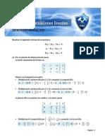 ejercicios-resueltos_sistemas-de-ecuaciones-lineales.pdf