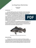 Aquaculture Design Project