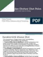 Kontraksi Dan Eksitasi Otot Polos Sistem Muskuloskletal FREE