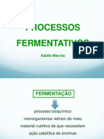 3 Classificacao Dos Processos Fermentativos (1)