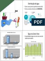 agua E Fundamental2009[1].pdf