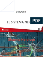 Anatomia y Fisiologia Del Sistema Nervioso - Expo