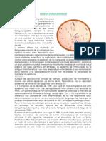 difteria EXPOSICION