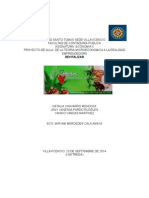 REVITALIZAR TERMINADO 25.docx