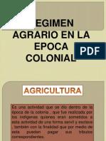 REGIMEN AGRARIO EN LA EPOCA DE LAS COLONIAS