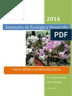 Informe Huerta Ecológica