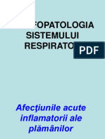 13.Pat.pulmonara