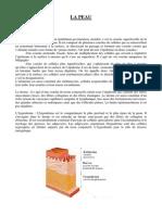 La Peau Anatomie Et Physiologie