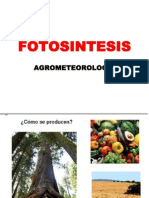 Fotosintesis_2014I.ppt