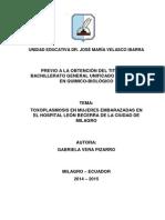 Proyecto Toxoplasmosis Embarazo