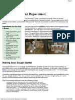 Baking Bread Experiment