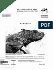 Cetnosaura pectinata