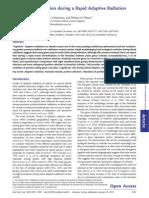 Molecular Adaptation During a Rapid Adaptive Radiation
