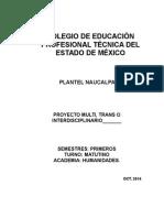 Formato Para Proyectos Académicos