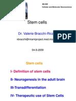 Stem Cell 2009