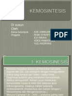 Kemo Sites Is