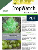 Adelaide Hills Crop Watch 010110