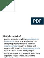 Bioreactor Fermentation