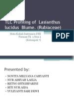 TLC Profiling of Lasianthus Lucidus Blume