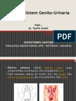 Anatomi GUS.pptx