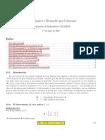Determinantes (Reglas y Teoremas)