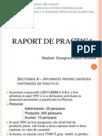 Prezentare Raport Practica Georgescu Iulia, 1132 CEPA