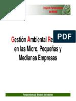 Presentacion GAR 28.04.10.pdf
