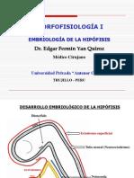 Desarrollo Embriologico de La Hipofisis Edgar Yan