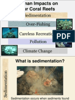 human impacts on coral reefs