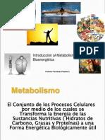 Clases 01 Intro Metabolismo Bioenergetica Utal 2013