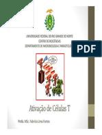 Ativação de Células T Ciências Biológicas