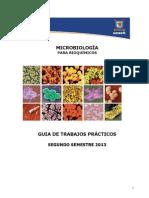 GUIA MIcrobiología
