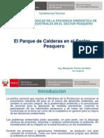 el-parque-de-calderas-del-sector-pesquero.pdf