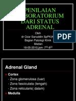 Aspek Lab Adrenal Glen