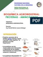 14-Proteínas