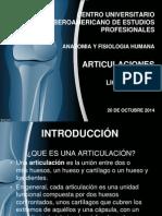 Articulaciones presentacion.pptx
