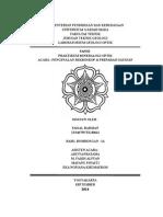 Cover Paper Mineralogi Optik