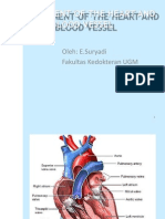 Cardio Vas Develompent
