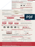 DuPont Indian Laundry Study Infographic.pdf