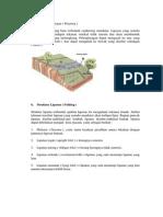 Struktur Pelengkungan