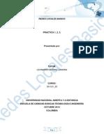 Informe Final de Practicas redes locales basica