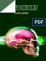 Head Injury Final Turel