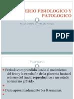 Puerperio Fisiologico y Patologico