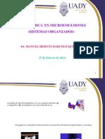 2 Fotoquímica en Microemulsiones 2014