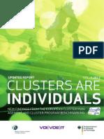 Clusters are Individuals- Volume II - Annex.pdf