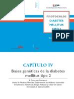 diabetes mellitus, protocolos sobre bases geneticas de la dm2
