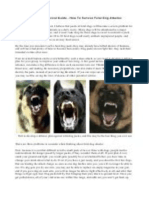 A Long-Term Survival Guide - How to Survive Feral Dog Attacks