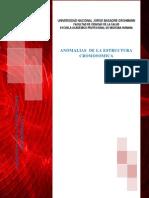 Anomalias de La Estructura Cromosomica (1)