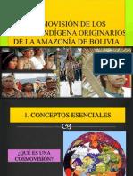 COSMOVISION PUEBLOS INDIGENAS DE LA AMAZONIA