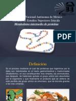Metabolimso intermedio de proteinas.pptx
